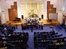 Concert Orchestra de mandoline